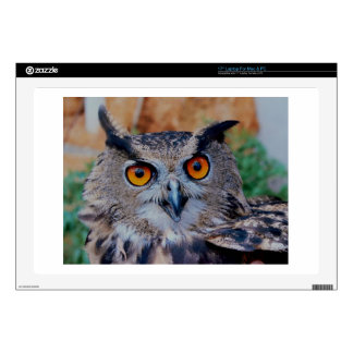 "GORGEOUS OWL EYES DECAL FOR 17"" LAPTOP"
