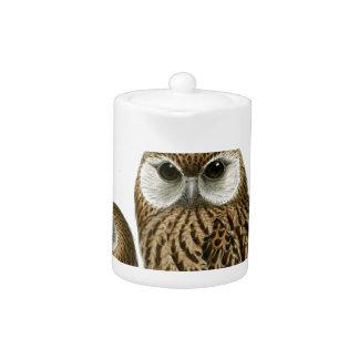 GORGEOUS OWL EYES TEAPOT