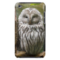 Gorgeous Owl iPod Touch Case