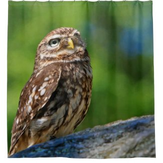 Owl Print Shower Curtain