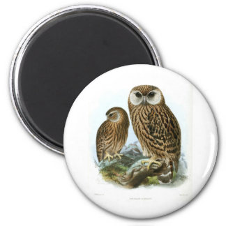 GORGEOUS OWLS 2 INCH ROUND MAGNET