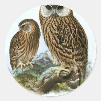 GORGEOUS OWLS CLASSIC ROUND STICKER