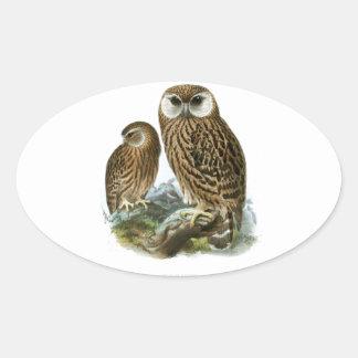 GORGEOUS OWLS OVAL STICKER