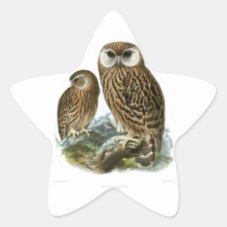 GORGEOUS OWLS STAR STICKER