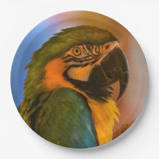 Gorgeous Parrot Paper Plate