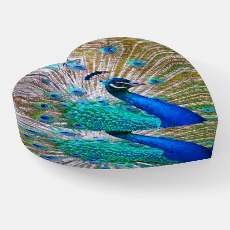 Gorgeous Peacock Gifts for Her, Peacock Paperweight
