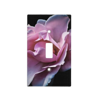 Gorgeous Pink Rose on Black. Light Switch Cover