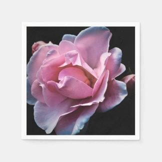 Gorgeous Pink Rose on Black. Paper Napkin