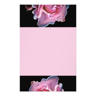 Gorgeous Pink Rose on Black Stationery