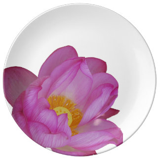 Gorgeous pink water lily aquatic flower plant porcelain plate
