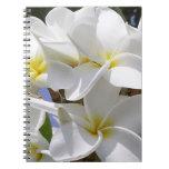 Gorgeous Plumeria Flowers Spiral Notebook