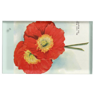 Gorgeous Poppies: 1940 illustration Place Card Holder