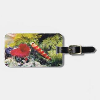 Gorgeous prawn goby luggage tag