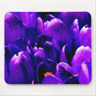 gorgeous puple blooms mouse pad