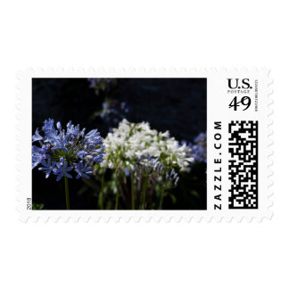 Gorgeous purple and white floral postage