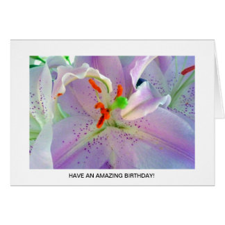 Gorgeous Purple and White Lilly Card