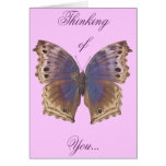 Gorgeous Purple Butterfly Cards
