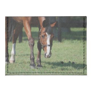 Gorgeous Quarter Horse Card Wallet