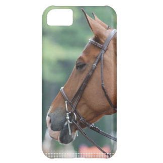 Gorgeous Quarter Horse iPhone 5C Case