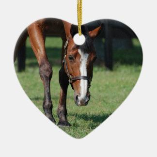 Gorgeous Quarter Horse Ceramic Ornament