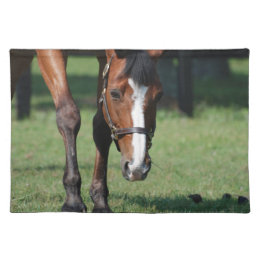 Gorgeous Quarter Horse Cloth Placemat