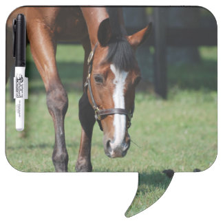 Gorgeous Quarter Horse Dry Erase Board