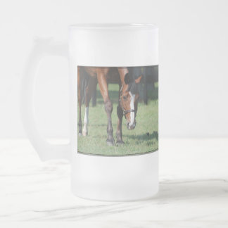Gorgeous Quarter Horse Frosted Glass Beer Mug