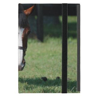 Gorgeous Quarter Horse iPad Mini Case