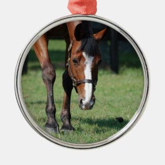 Gorgeous Quarter Horse Metal Ornament