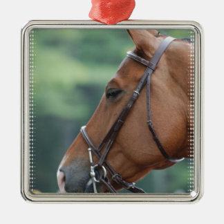 Gorgeous Quarter Horse Christmas Ornaments