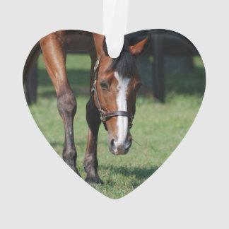 Gorgeous Quarter Horse Ornament