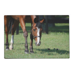 Gorgeous Quarter Horse Placemat