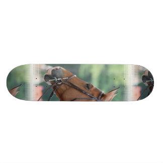 Gorgeous Quarter Horse Skateboard