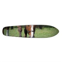Gorgeous Quarter Horse Skateboard Deck