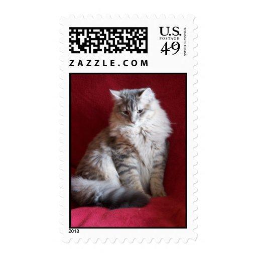 gorgeous raisin stamp 2