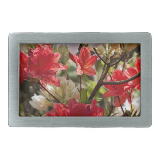 Gorgeous red and white flowers rectangular belt buckle
