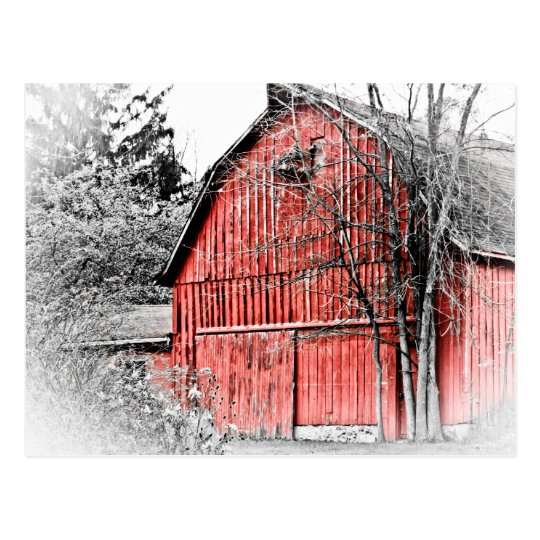 Gorgeous Red Barn Postcard
