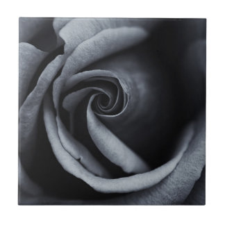 Gorgeous Rose in Black & White Small Square Tile