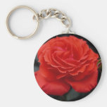 Gorgeous Rose Key Chains