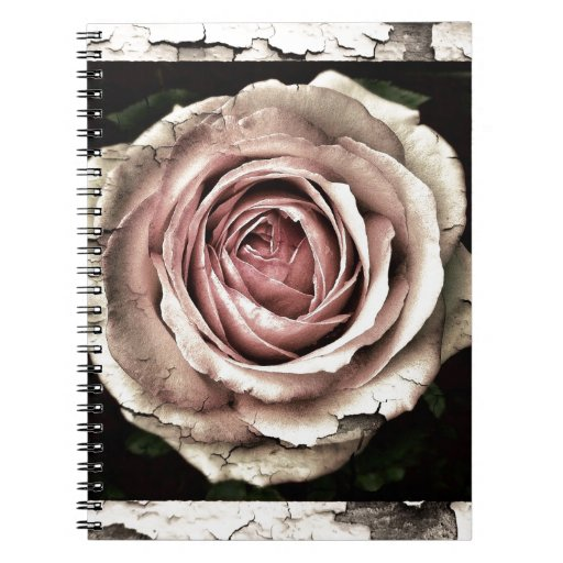 Gorgeous Rose Note Books