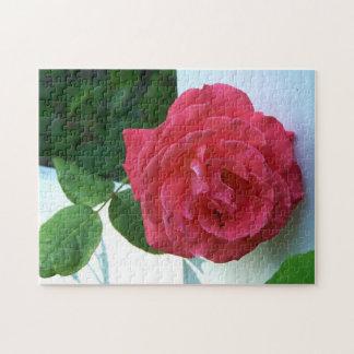 Gorgeous Rose Puzzle