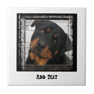 Gorgeous Rottweiler Dog face personalized Small Square Tile