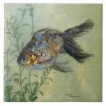 Gorgeous Ryukin Calico Goldfish Tile