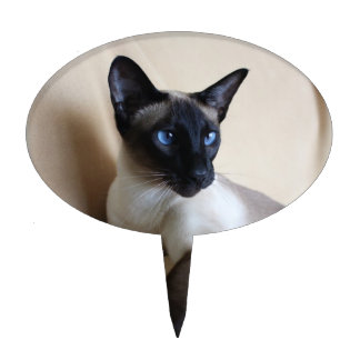 Gorgeous Siamese Cat Face Cake Topper