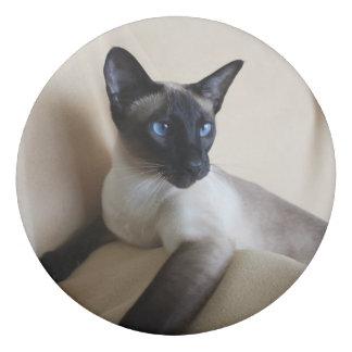 Gorgeous Siamese Cat Face Eraser