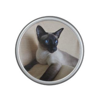 Gorgeous Siamese Cat Face Speaker