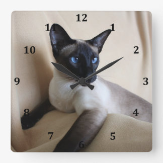 Gorgeous Siamese Cat Face Square Wall Clock