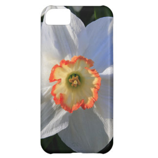 Gorgeous Spring Flower in Central Park Case For iPhone 5C