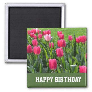 gorgeous spring pink tulip flowers happy birthday 2 inch square magnet