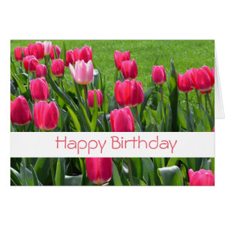 gorgeous spring pink tulip flowers happy birthday card
